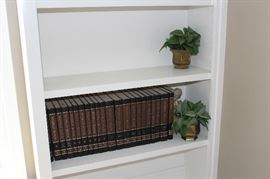 World Book set and faux plants