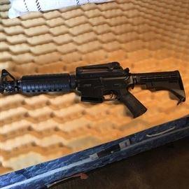 Paint ball or pellet gun