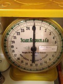 Yellow Sears, Roebuck, & Co. scale