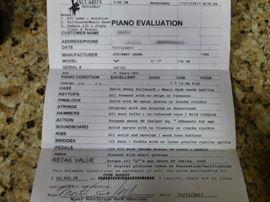 Steinway Piano Evaluation