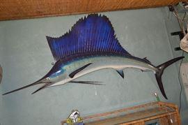 9 foot sail fish