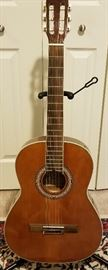 Carlos Robelli Guitar Serial CCGTRPACK