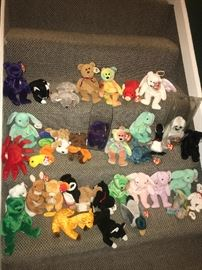 These are a sample of the numerous Beanie Babies available.  Most of the ones in this picture have a much higher value then the common ones.