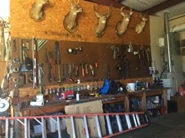 Deer mounts and tools