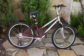 Cross 7 Zoom Incline Bike and Accessories:  $525.00