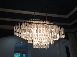 Beautiful Hanging Chandelier made of oval white cadiz shells