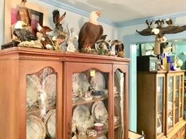 Eagle collection, limoges