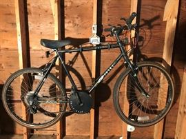 12 Speed Bike  http://www.ctonlineauctions.com/detail.asp?id=715831