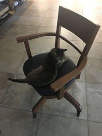 desk chair (cat not included)