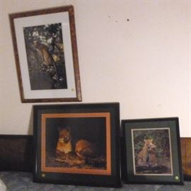 "Set of three framed and matted photographs of  leopards and lion, bigger one is 24"" L X 28"" W"