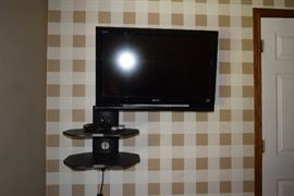 Wall Mounted Sony Television