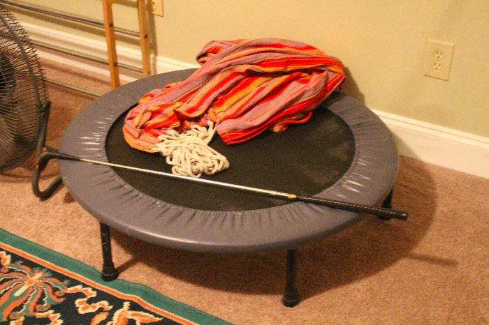 exercise trampoline, hammock, Spaulding 5 golf club