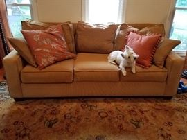 Thick corduroy sofa (dog not included...but adorable!)