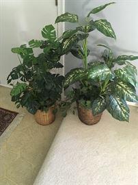 beautiful faux plants