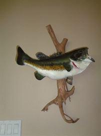 bass mount