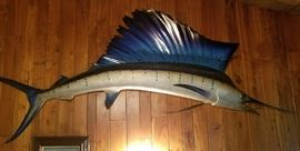 10' LONG SAILFISH  BUY IT NOW  $ 650.00