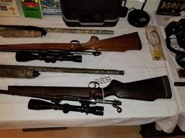 Firearms/guns, gun,