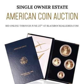0  coin auction insta