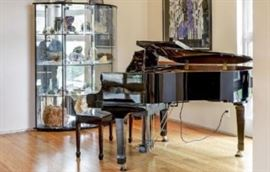 Sojin DG-1 piano with IQ player system upgraded to device controlled.