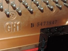 GH1 B5476847