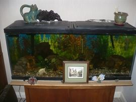 65 Gallon Fish Tank with all the extras  The tank will sell with the fish that are in it.
