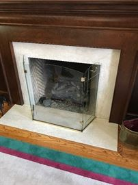 Glass fireplace enclosures (2 available)