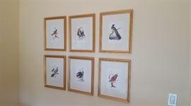 Set of Bird Lithographs