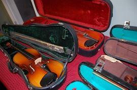 Violins, Violin