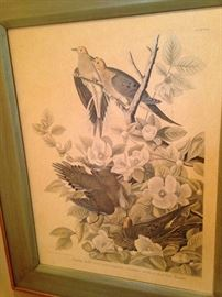 One of three companion Audubon bird pictures  (Audubon  was notable for his extensive studies documenting all types of American birds.)