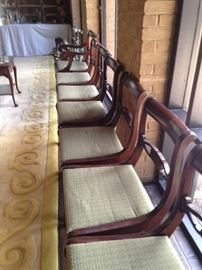 Many matching dining chairs