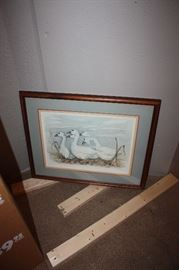 5 white snow geese print, nice condition and signed.
