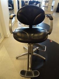 Collins Silhouette Hydraulic Styling Salon Chair ...