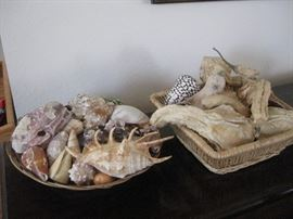 Seashells and squash accents in baskets / Contains 2 full baskets