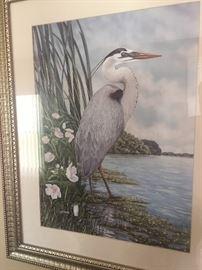 Framed Great Blue Heron Art by JW Harris.