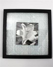 Framed floral art