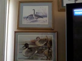 Duck Prints & Lithos