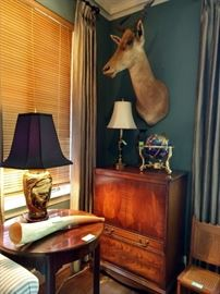 Meet Clyde! He's our resident Red Hartebeest shoulder mount.                                                                                                      He's levitating above a beautifully figured vintage wooden TV cabinet and a gemstone globe.