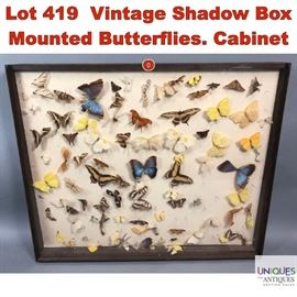 Lot 419 Vintage Shadow Box Mounted Butterflies. Cabinet o