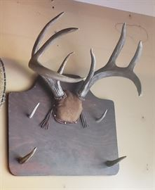 Vtg Deer Mount/Rack