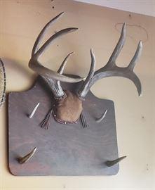 Vtg Deer Mount/Rack