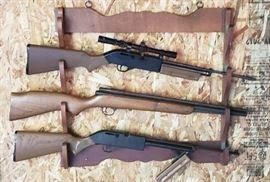 Misc. Air Rifles