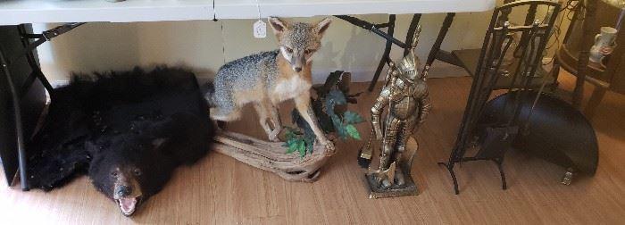 Vintage bearskin rug, grey fox, brass knight fireplace set, black fireplace set
