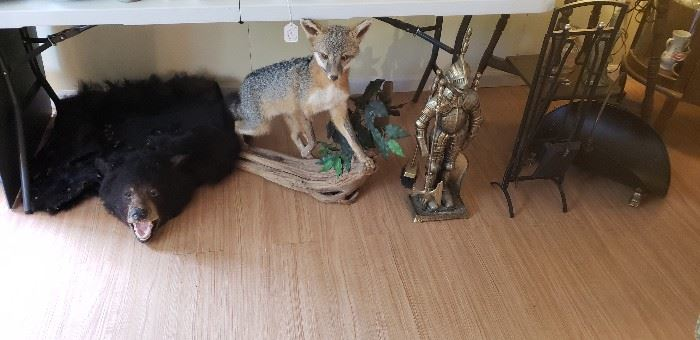 Vintage bearskin rug, grey fox, Heavy brass knight fireplace set, black fireplace set