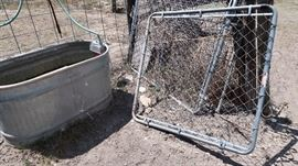 Water Trough & Chainlink Gates