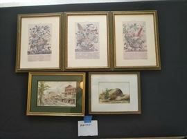 Gold Framed Color Prints  https://ctbids.com/#!/description/share/46135