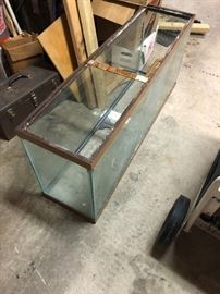 fishtank goes with base in kitchen