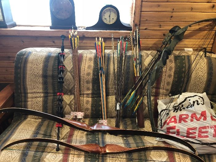 Archery Bow and Arrows Bow Hunting