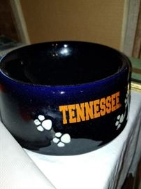 UT Dog Bowl