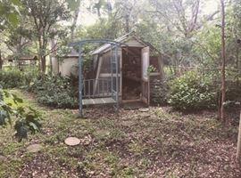 fairy tale backyard