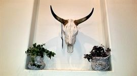 Real Cow Skull - Excellent Condition